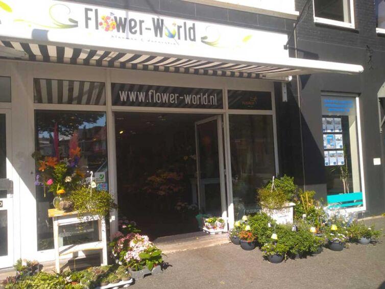 FlowerWorld2