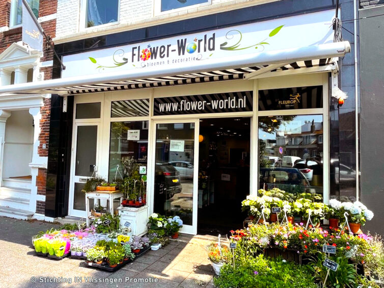 FlowerWorld26