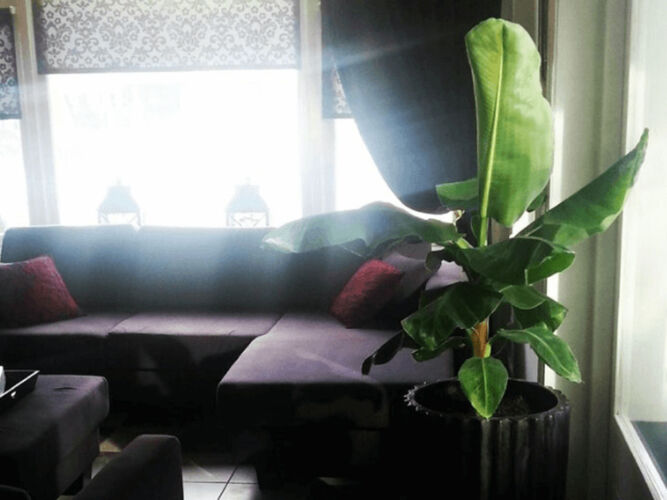 HotelBedByTheSea2
